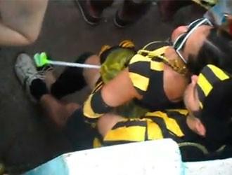 abelhas-copula